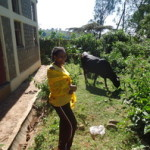 Abebech Melkamu of Ethiopia received $550.00 to purchase a hybridized cow.