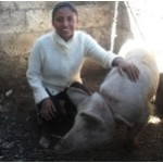 Maribel from Mexico received a loan to buy three piglets to raise and sell.