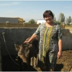 Kulijamal from Kyrgyzstan received a loan to buy cows to raise.