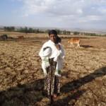 Bizu of Ethiopia received $300.00 to purchase a farm ox.