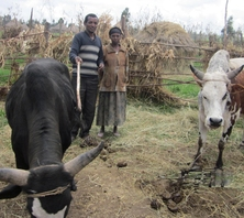 Bayush of Ethiopia received $250.00 to buy fertilizer for crops.