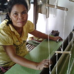 Noeum of Cambodia received $300.00 to purchase fertilizer, pesticide and silk.