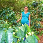 Meira of Honduras received $675 to buy farming supplies to re-invest in her coffee crops.