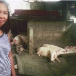 Nancy from the Philippines received $450 to buy more pigs to expand her business raising and selling pigs.