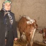 A loan of $600 helped Ochagul to buy more cattle.