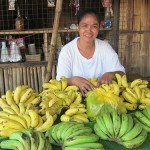 $225 was given to Wilda as part of her requested loan amount to purchase additional boxes of bananas for resale.