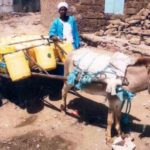 Our $750 loan to Martha in Kenya will help her buy another donkey and cart for her business selling water.