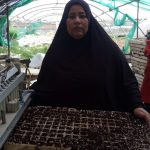 Our loan of $550 to Azza in Jordan will help her buy seeds and plants to grow and sell in her plant nursery.