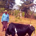 Our $325 loan to Maurine in Kenya will help her buy seeds and fertilizer to expand her vegetable and dairy farm.