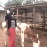 Our $225 loan to Sulekha in Kenya will help her buy animal feed and a diary cow for her milk production business.